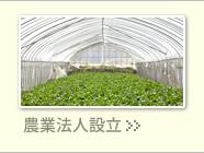 農業法人の設立